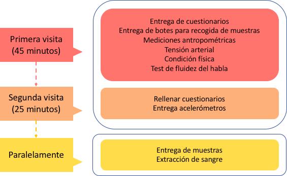 Padresformados.es archivo: grafico