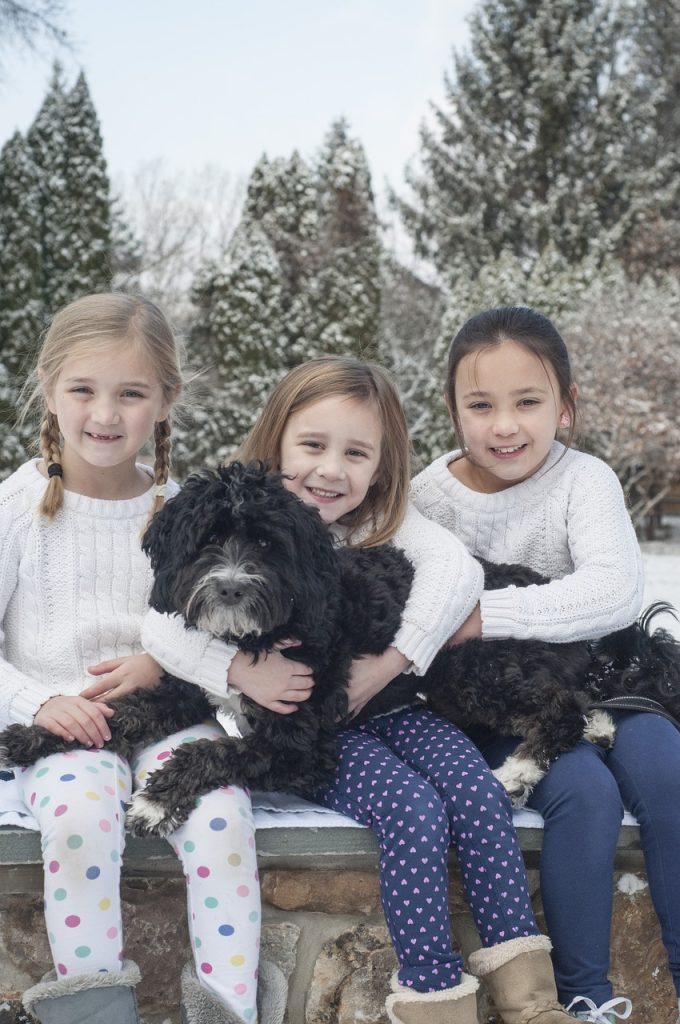 sisters, dog, snow